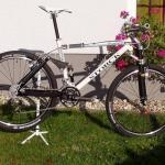 11,16 - Storck Adrenalin